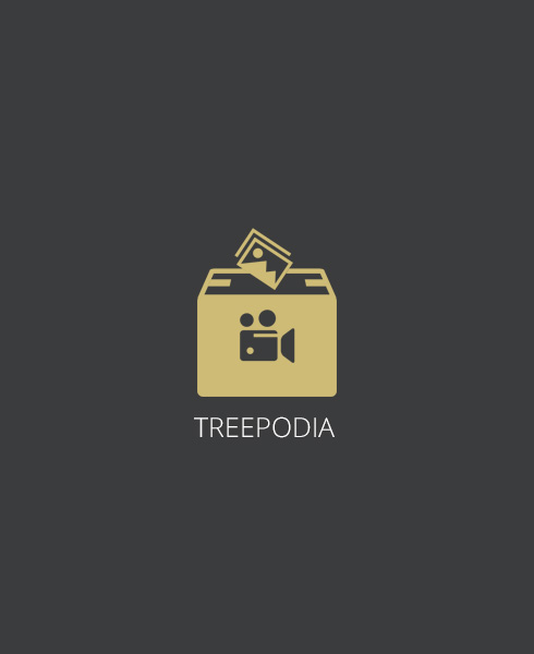 webweit-shopware-plugin-treepodia