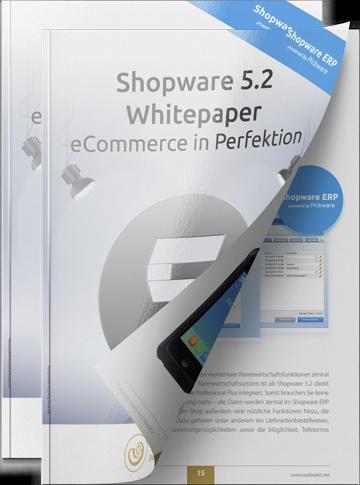 webweit-shopware-whitepaper-cover